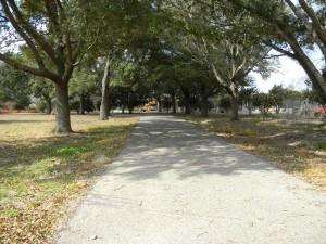 Gulfport MS - Oaks down Driveway
