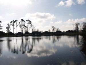 Robinwood Forest Lake